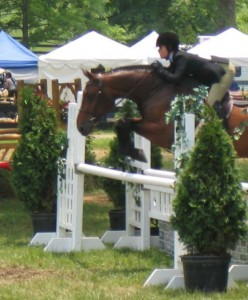 Hunter jumper, show ring hunter, hunter judge, hunter judge Canada, hunter judge USA, major hunter mistakes