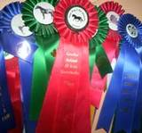 Horse show, hunter jumper, hunter judge, hunter judge canada, hunter judge usa, laura kelland-may, professional grooms