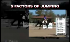 Hunter Jumper, hunter judge Ontario, hunter judge canada, hunter judge USA, horse training, horse riding, horse showing, George Morris, Laura Kelland-May, Thistle Ridge Skill Builders,